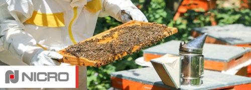 nicro-progetto-apicoltura-urbana-preview